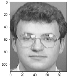 Facial Recognition data set sample